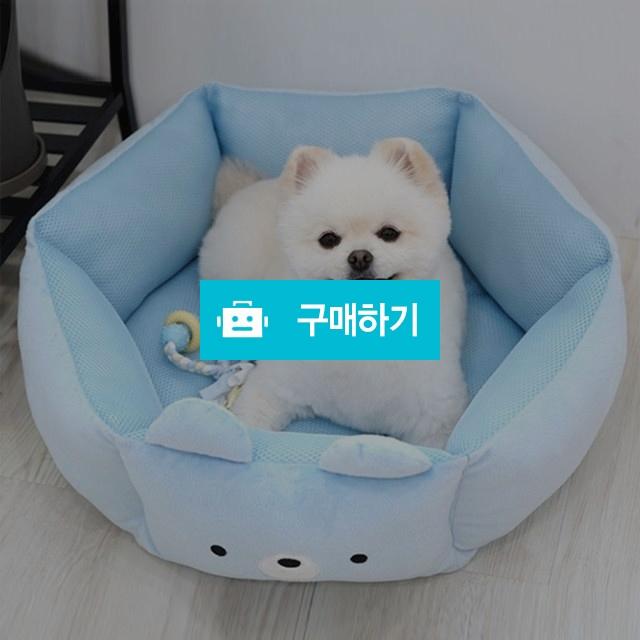 패리스독 양면 베어 매쉬베드 - 블루, 핑크 / 행복한일만님의 스토어 / 디비디비 / 구매하기 / 특가할인