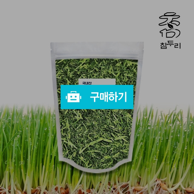 참두리 덖은 보리새싹 원물 500g (국내산) / 새싹보리 보리순 차 / 참두리 / 디비디비 / 구매하기 / 특가할인