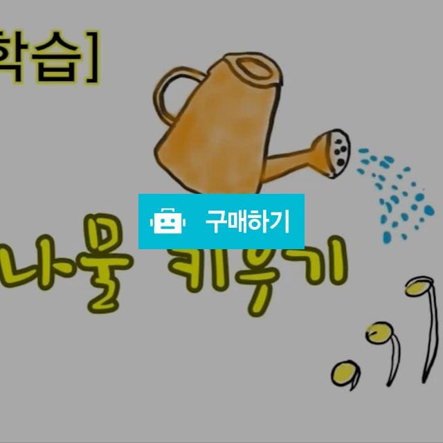 콩나물 키우기, 물만 주면 키가 쑥쑥 / 닥터초록 / 디비디비 / 구매하기 / 특가할인