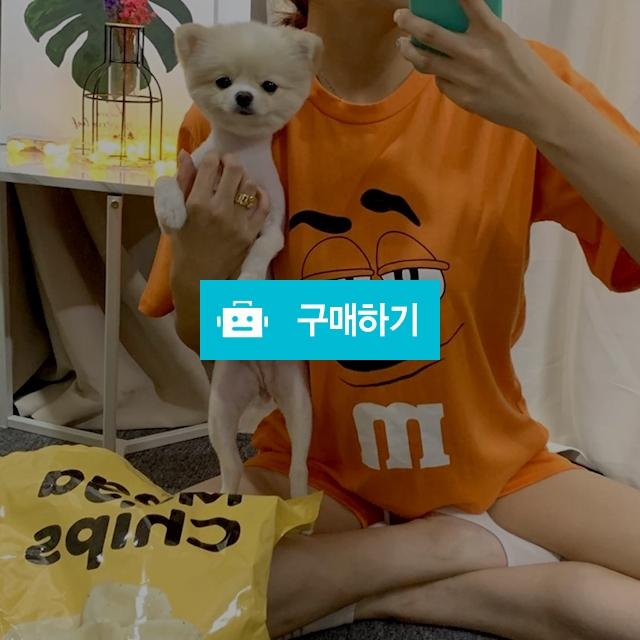 3부 엠앤엠 파자마 잠옷 트레이닝 세트 / 데일리룩 멜로디민 / 디비디비 / 구매하기 / 특가할인