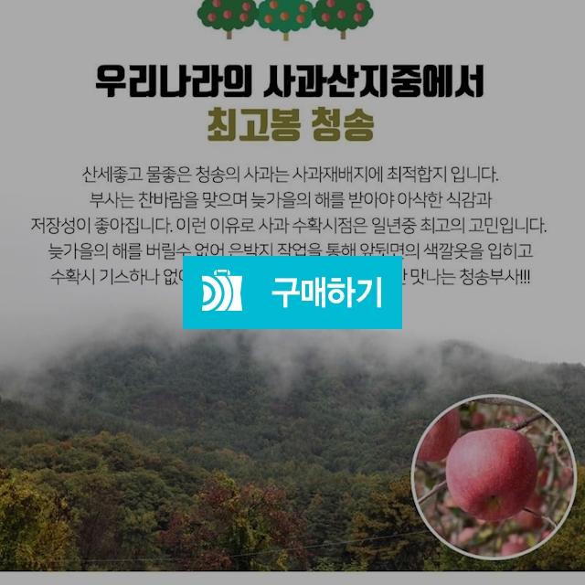 울아버지 청송사과 청송부사 5kg / KPlus님의 스토어 / 디비디비 / 구매하기 / 특가할인