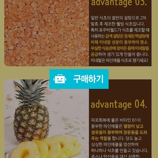 섬유질이 살아있는 수제발효 파인애플식초 / 루피나님의 스토어 / 디비디비 / 구매하기 / 특가할인