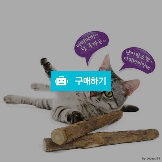 산만한 아기고양이장난감 분리불안 우울증 스트레스해소 캣토이 / 댕유마켓님의 스토어 / 디비디비 / 구매하기 / 특가할인