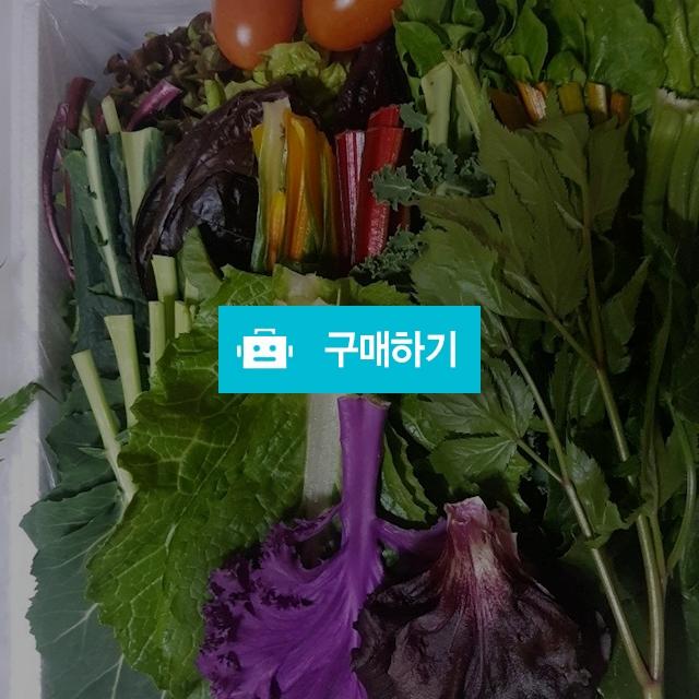 쌈채소 1kg / 삼촌네농수산 / 디비디비 / 구매하기 / 특가할인