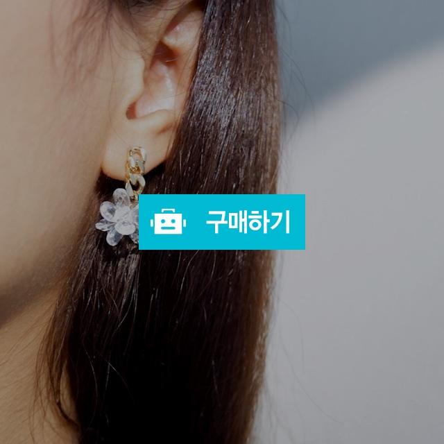 꽃 빤짝빤짝 귀걸이 / ABERNS / 디비디비 / 구매하기 / 특가할인