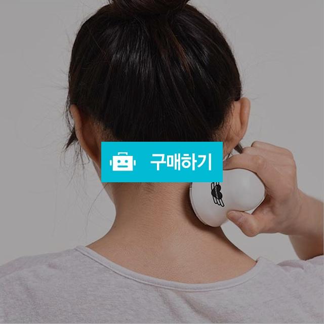 구르미 마사지볼 온열 쿨링마사지기 아이스쿨러 / 정품할인샵 동림 / 디비디비 / 구매하기 / 특가할인