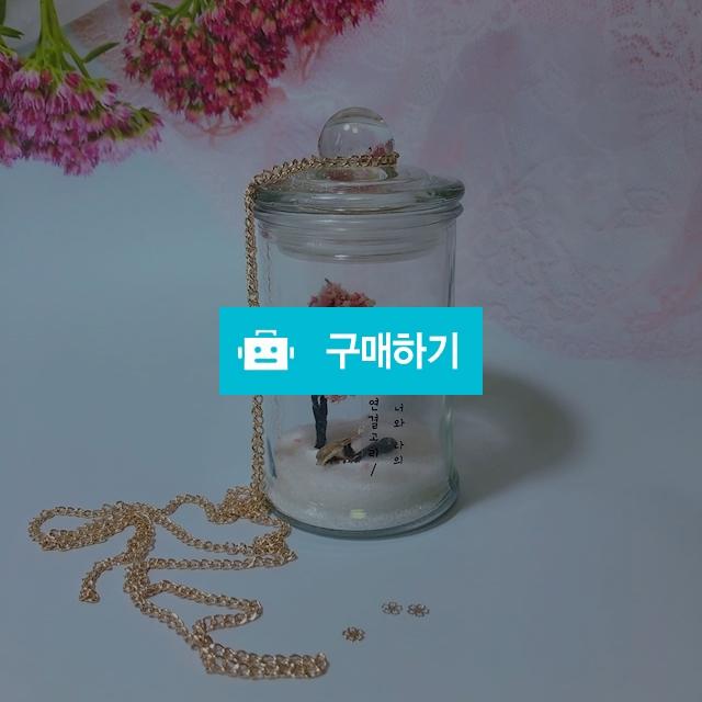 벚꽃나무 탯줄보관타임캡슐 / 기린감성님의 스토어 / 디비디비 / 구매하기 / 특가할인