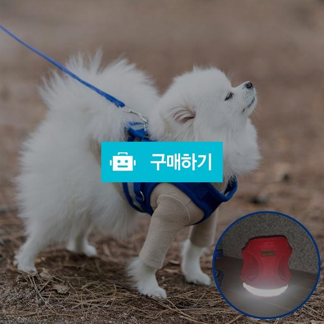 미즈펫 강아지 하네스 가슴줄 리드줄 블루 / 지앤비스토어님의 스토어 / 디비디비 / 구매하기 / 특가할인