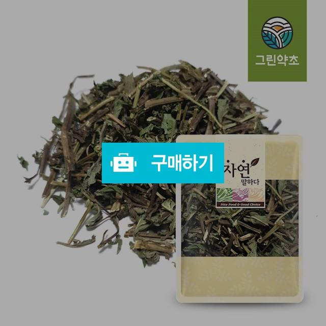 [그린약초] 국내산 박하잎 박하 300g / 그린약초님의 스토어 / 디비디비 / 구매하기 / 특가할인