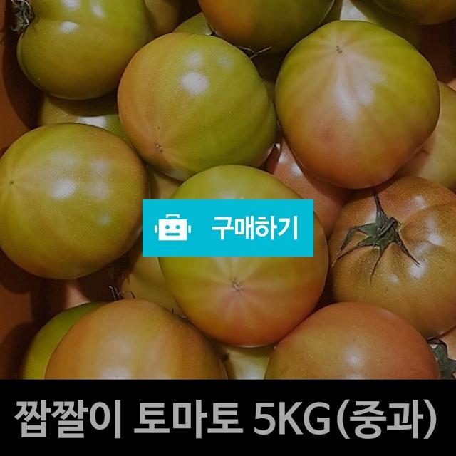 대저 짭짤이 토마토 5kg 1박스 중과 / 부평마그네 / 디비디비 / 구매하기 / 특가할인