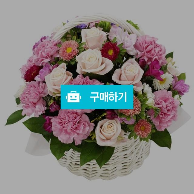 축하 꽃바구니 생신 기념일 이벤트 [oz05_058] / 바로플라워 / 디비디비 / 구매하기 / 특가할인