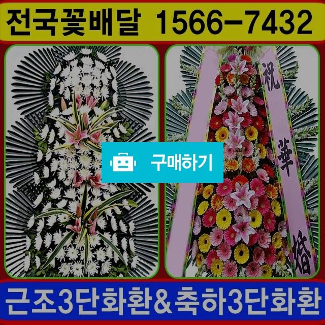 근조화환 축하화환 개업 축하 조화배달 / 070플라워님의 스토어 / 디비디비 / 구매하기 / 특가할인