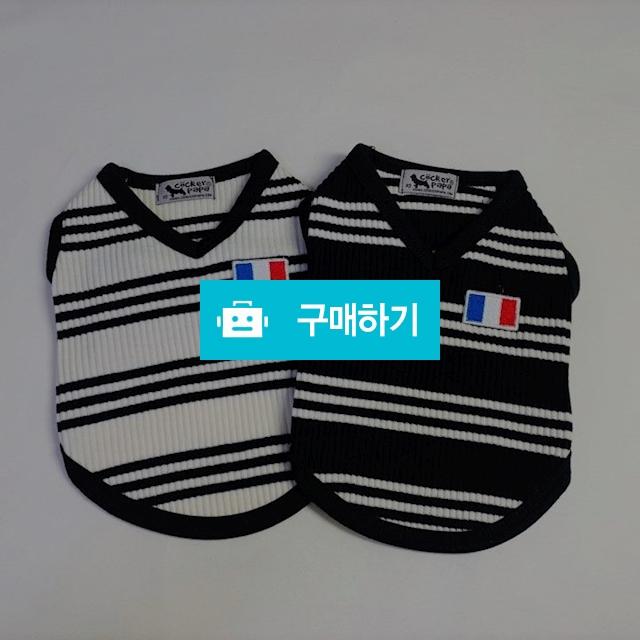 프랑스 국기 테니스 티 / 코코댕댕 / 디비디비 / 구매하기 / 특가할인