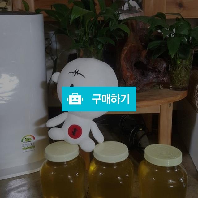 토종꿀 아카시아 무설탕꿀 / 영블리샵님의 스토어 / 디비디비 / 구매하기 / 특가할인