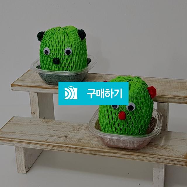 곰돌이 가습기 만들기 미니가습기 단체수업 재료 / 닥터초록 / 디비디비 / 구매하기 / 특가할인