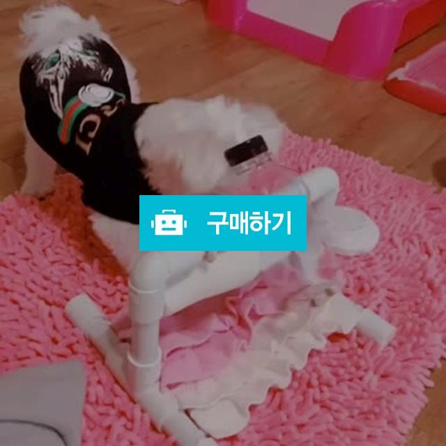 강아지 노즈워크 장난감 통도리도리^^♡~ / 멍멍닷컴님의 스토어 / 디비디비 / 구매하기 / 특가할인