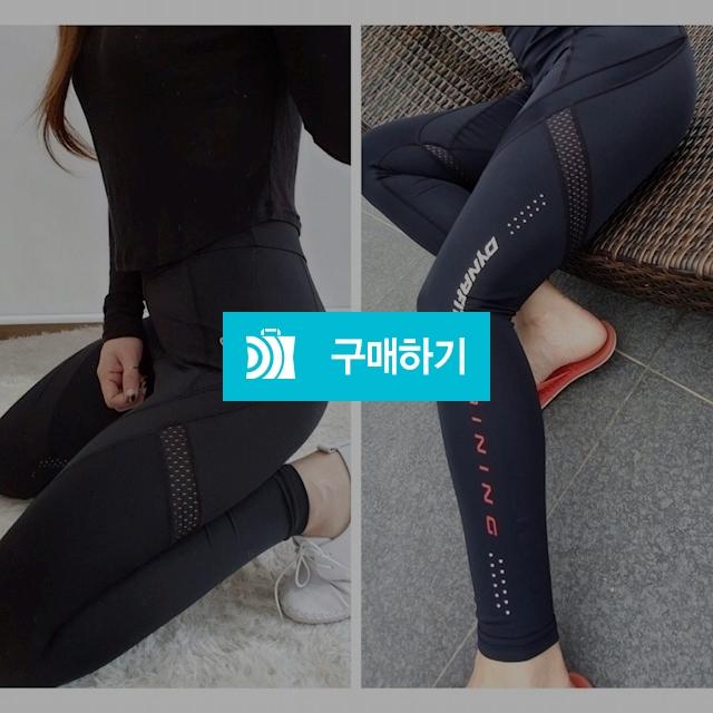 다핏 매장판 워터 레깅스 / 오드리샵 / 디비디비 / 구매하기 / 특가할인