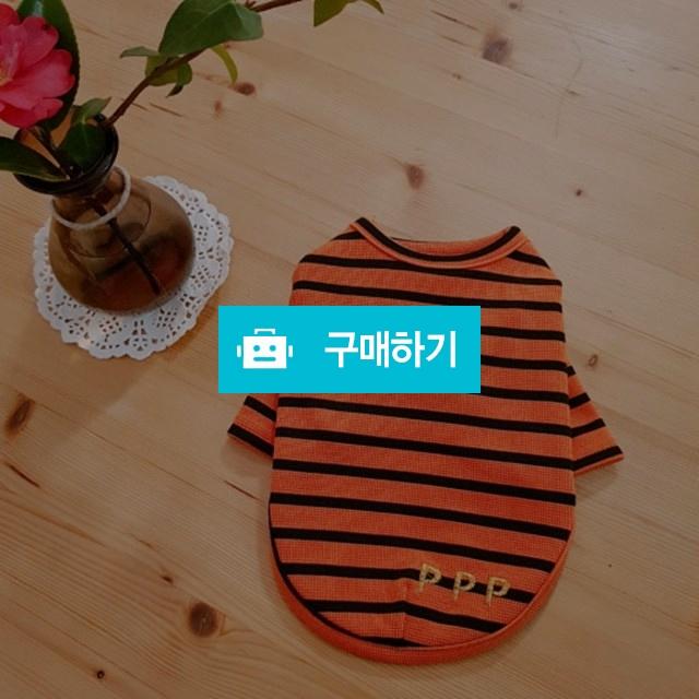 와플 오렌지 티셔츠 / 코코댕댕 / 디비디비 / 구매하기 / 특가할인