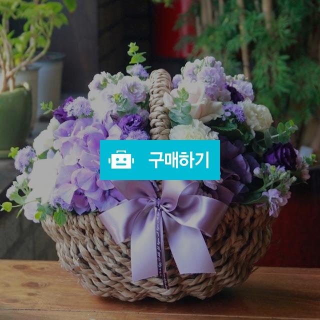 기념일 이벤트 축하 꽃선물 꽃배달 보라색 꽃바구니 / 바로플라워 / 디비디비 / 구매하기 / 특가할인