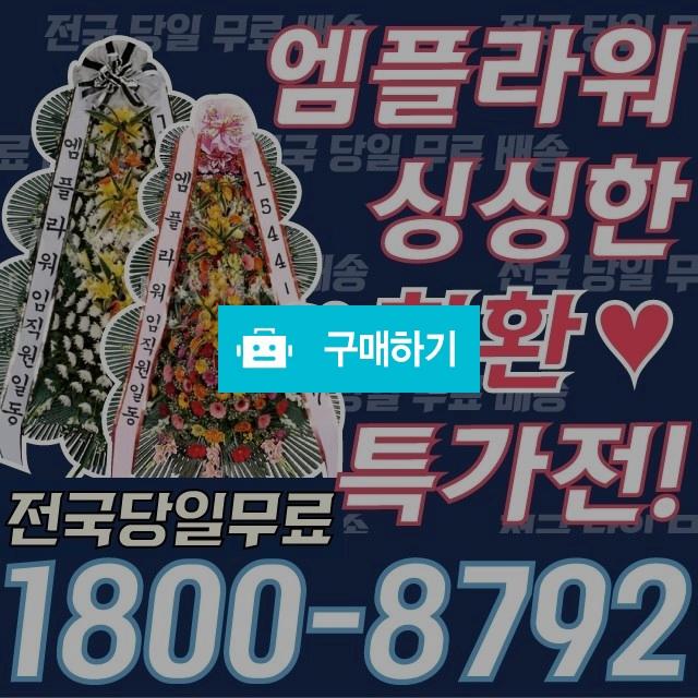 근조화환 결혼식 축하 개업 조화배달 / 엠플라워님의 스토어 / 디비디비 / 구매하기 / 특가할인